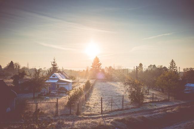cold-winter-morning-over-gardening-colony-picjumbo-com