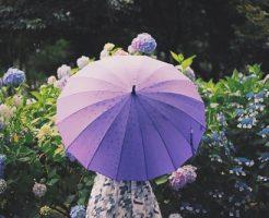 雨の日 デート 東京