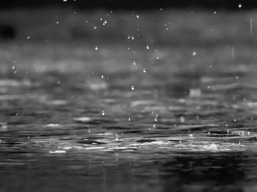 雨の日 過ごし方 一人