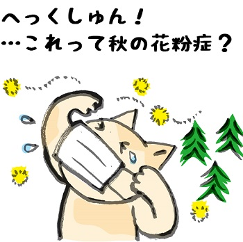 kafun_aki