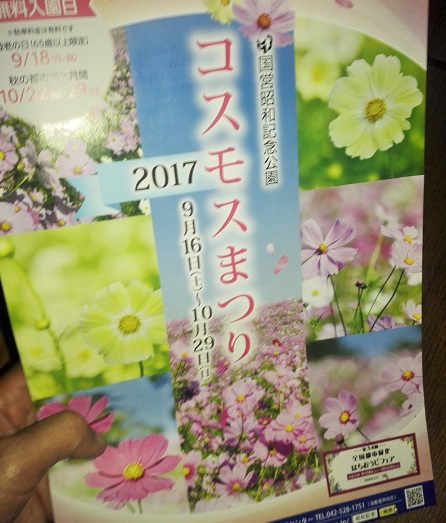 昭和記念公園 コスモス 見頃